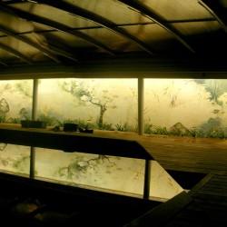 panoramica mural piscina noche